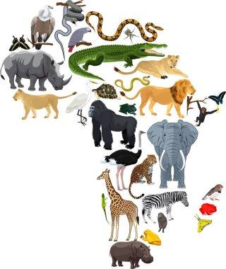 animals Africa - vector illustration