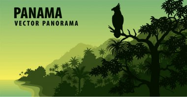 vector panorama of Panama with jungle raimforest with harpy eagle