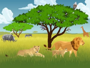 vector african savannah with lions, rhino, girrafe, vulture, zebra and heron