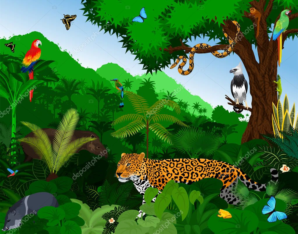 Rainforest with animals vector illustration. Vector Green Tropical Forest jungle with parrots, jaguar, tapir, peccary, harpy, motmot, anaconda and butterflies.