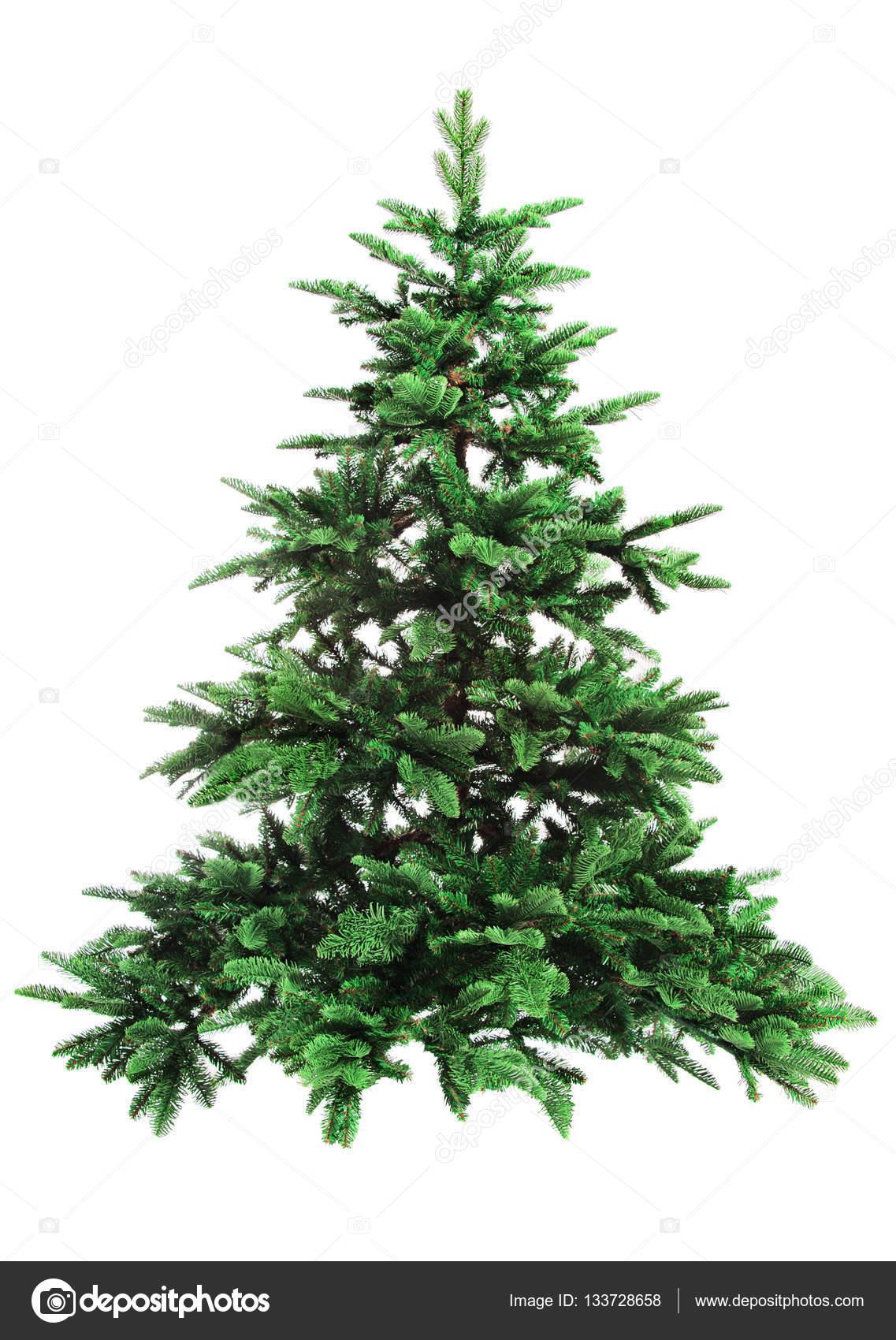 Bare Christmas Tree - Image Home Garden and Tree Rtecx.Com