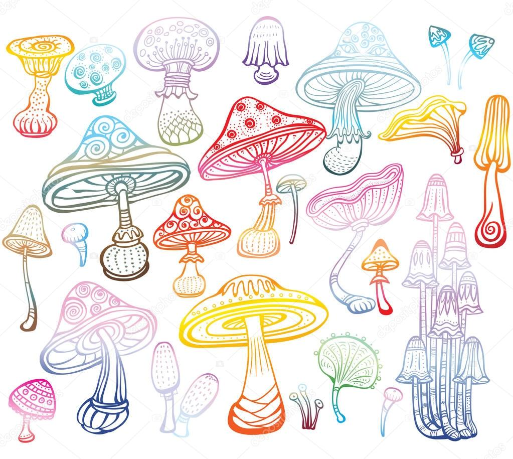 Set of Sketch of colored mushrooms