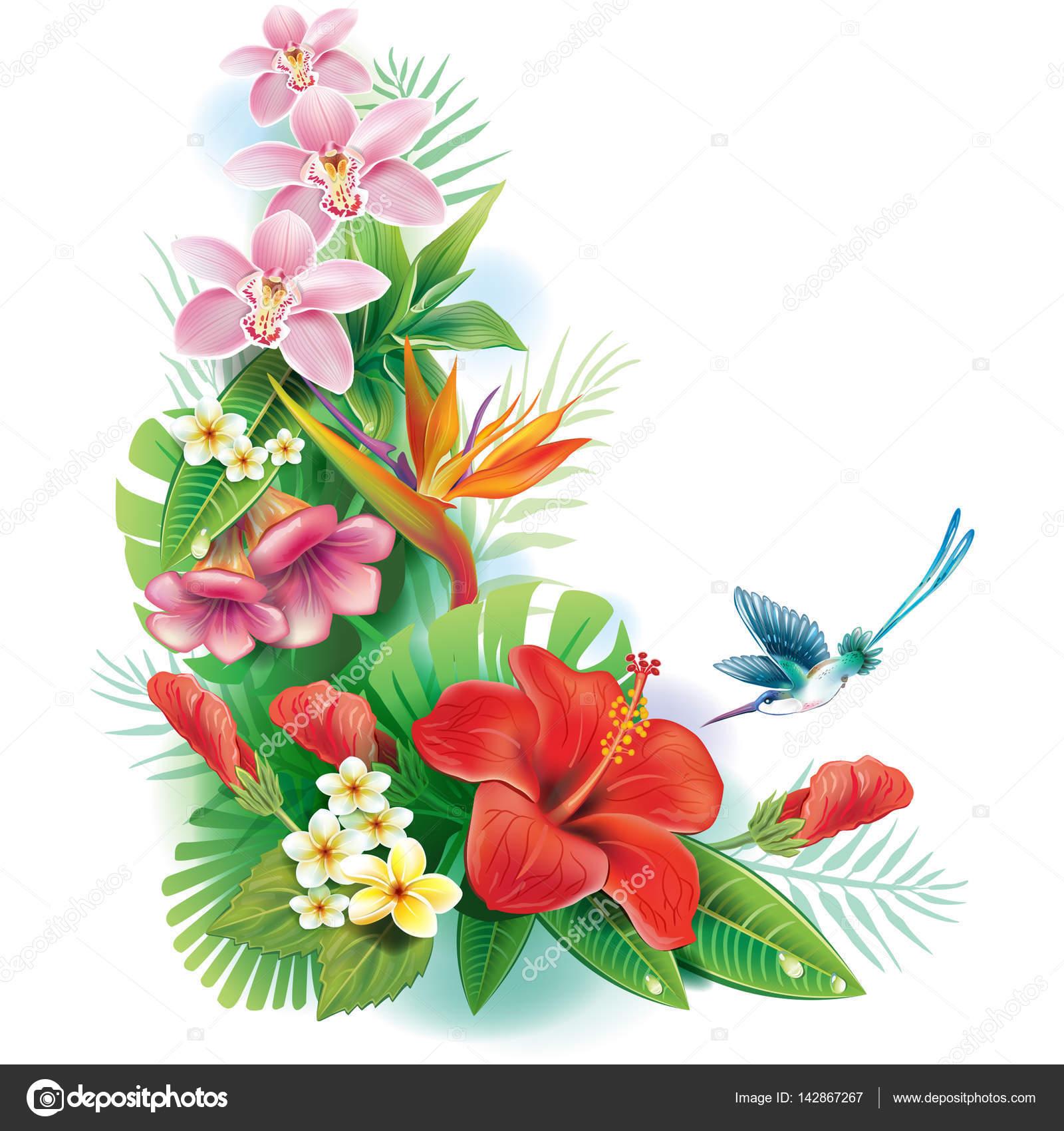 arreglo de flores tropicales y hojas u vector de stock