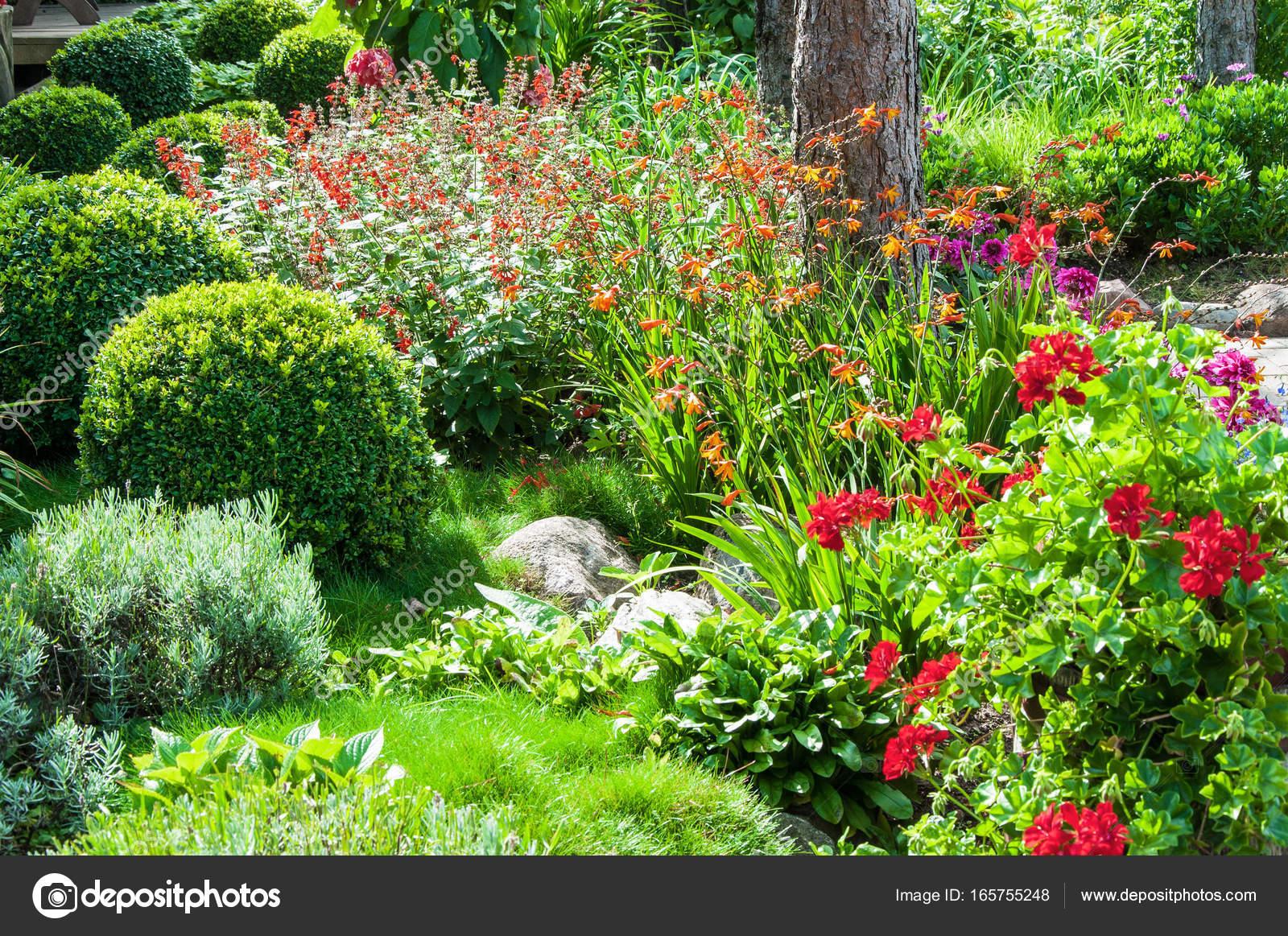 mooie bloementuin stockfoto katkov 165755248 On www bloem en tuin nl