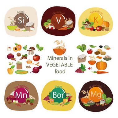 Minerals in plant foods.