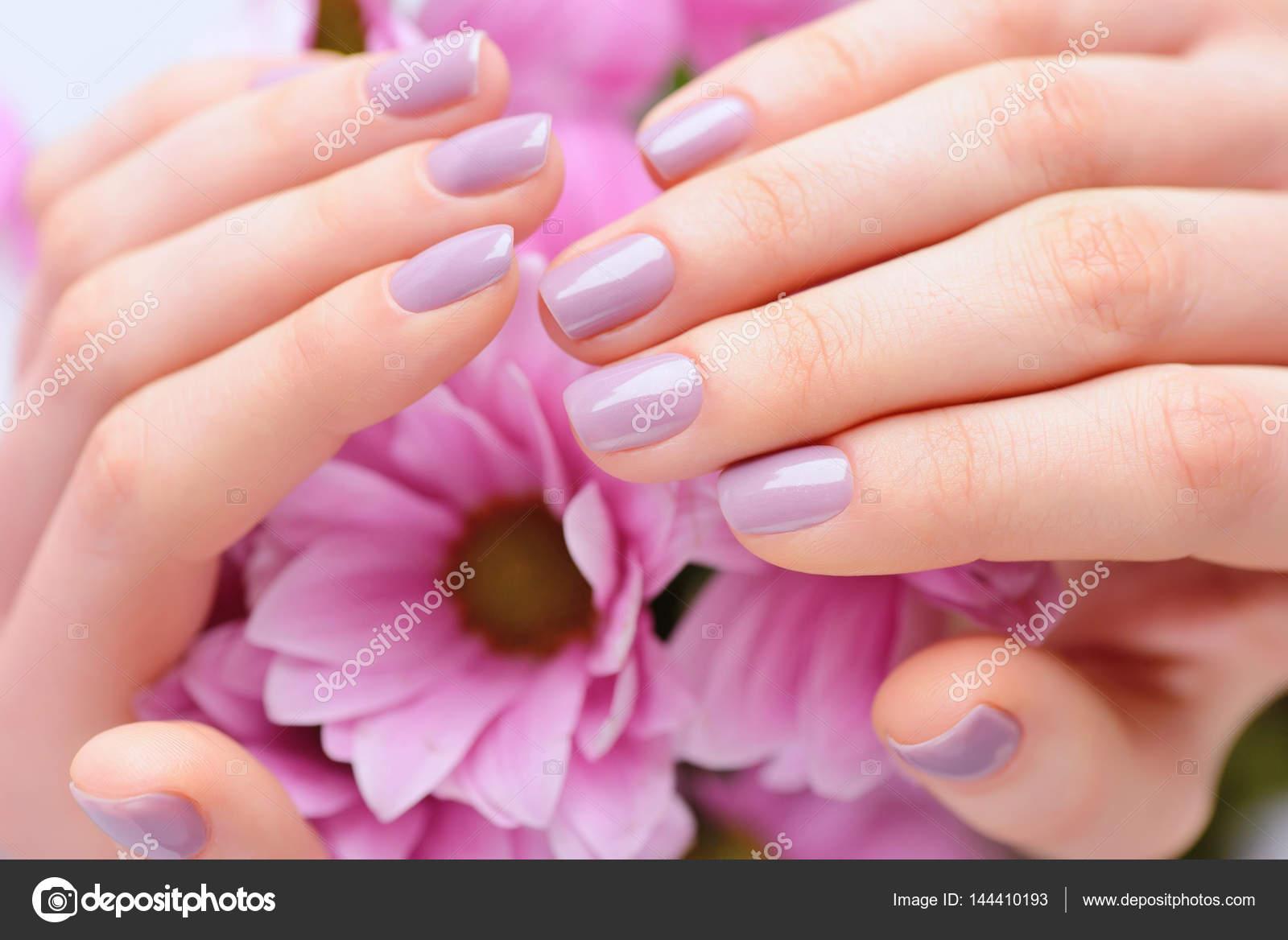Colores Rosas Para Unas Manos De Una Mujer Con Rosa Manicura En