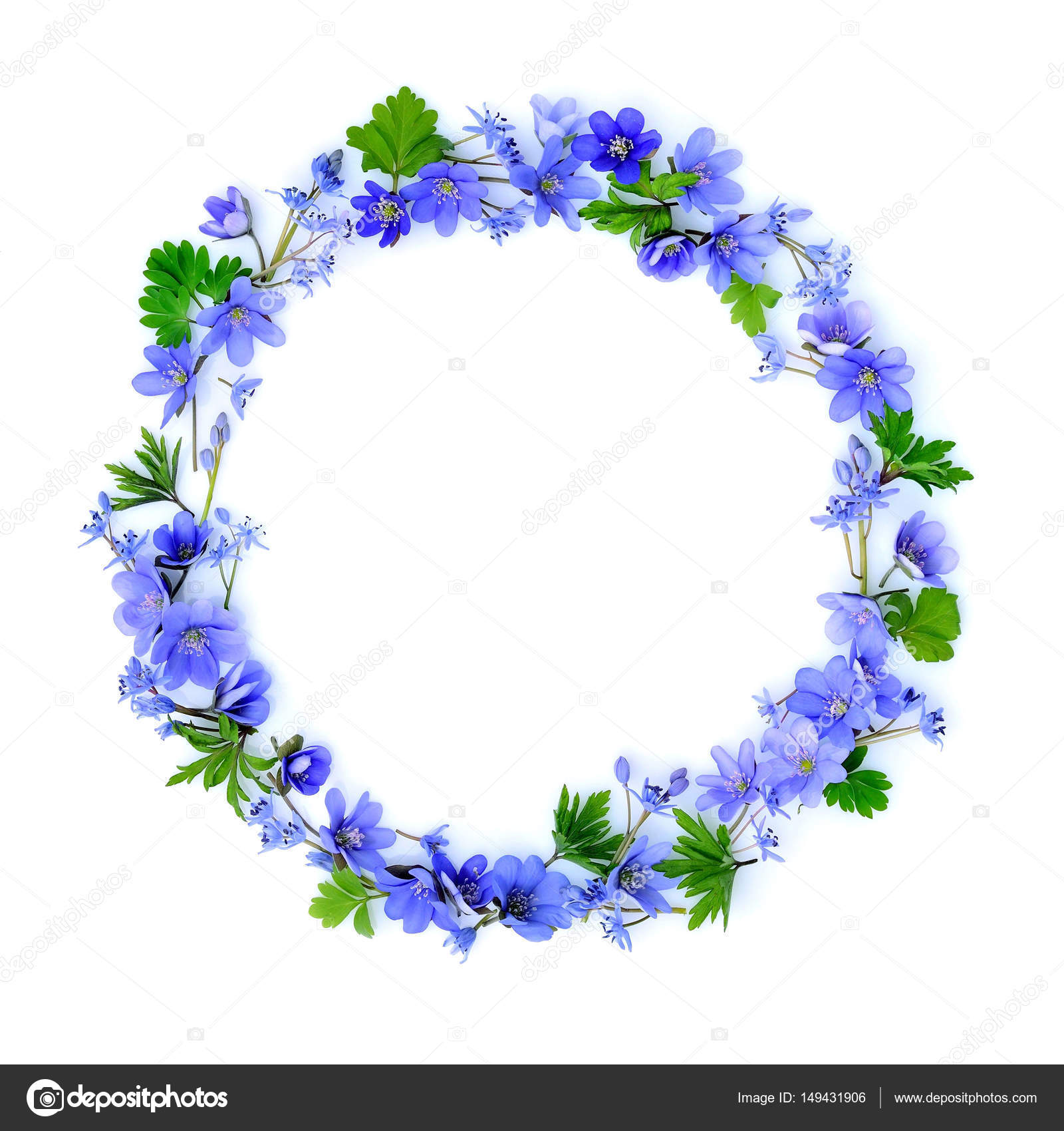 Circle Made Of Blue Spring Flowers On White Background Top View