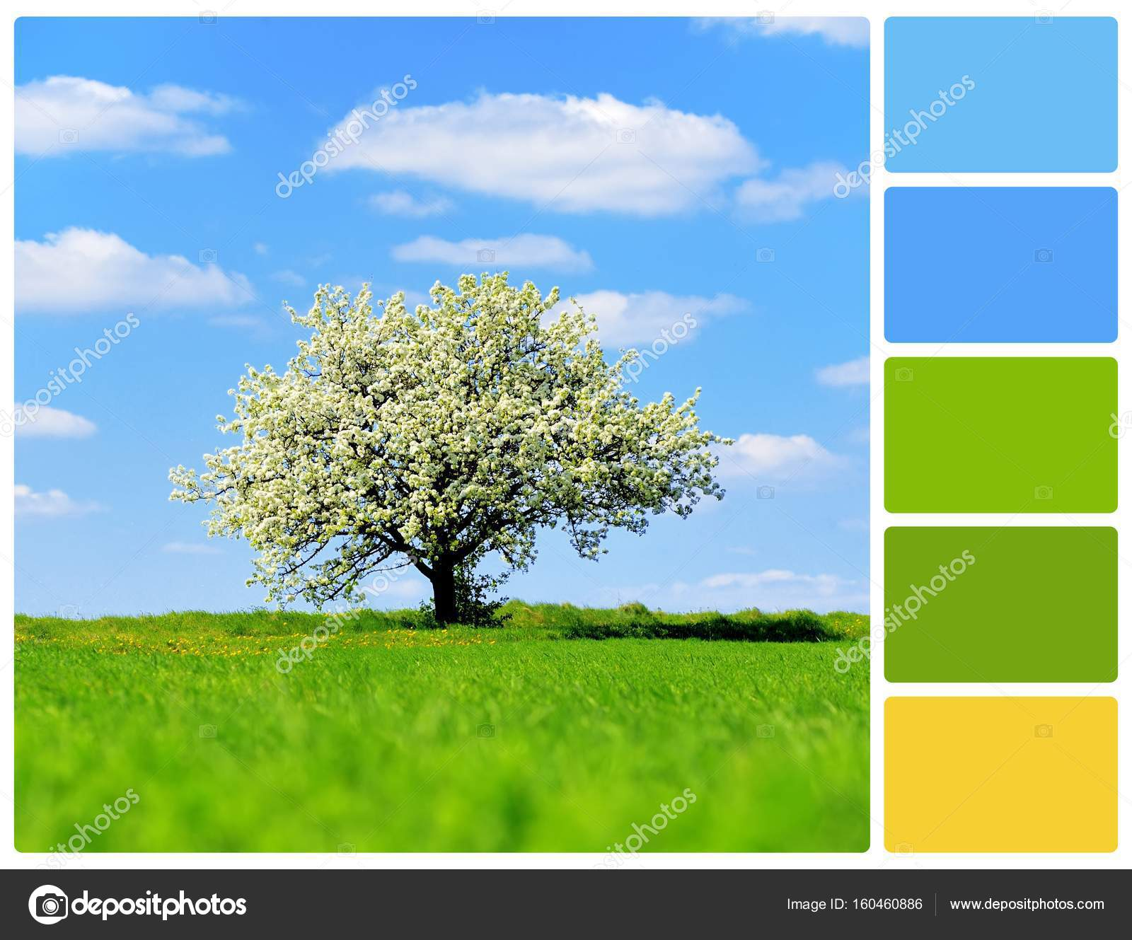 Landscape with tree with palette color swatches — Stock Photo ...