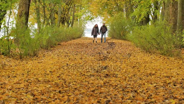young model couple in love - autumn park nature - couple man and woman walking in park - couple holding hands - woman runs to man - couple kiss - couple embrace - happy couple slow motion