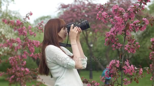 Young woman with camera take photos in park or garden. An attractive red-haired woman smiles making photo in a cherry orchard. The concept of using gadgets and active lifestyle.