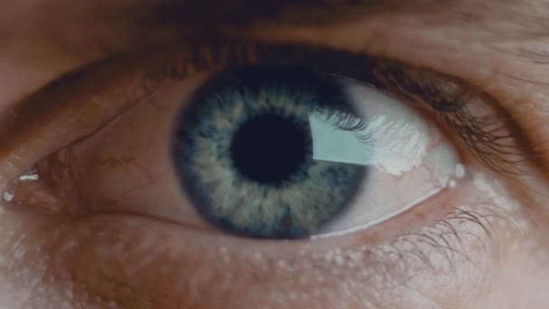 close up macro eye opening beautiful blue iris natural beauty