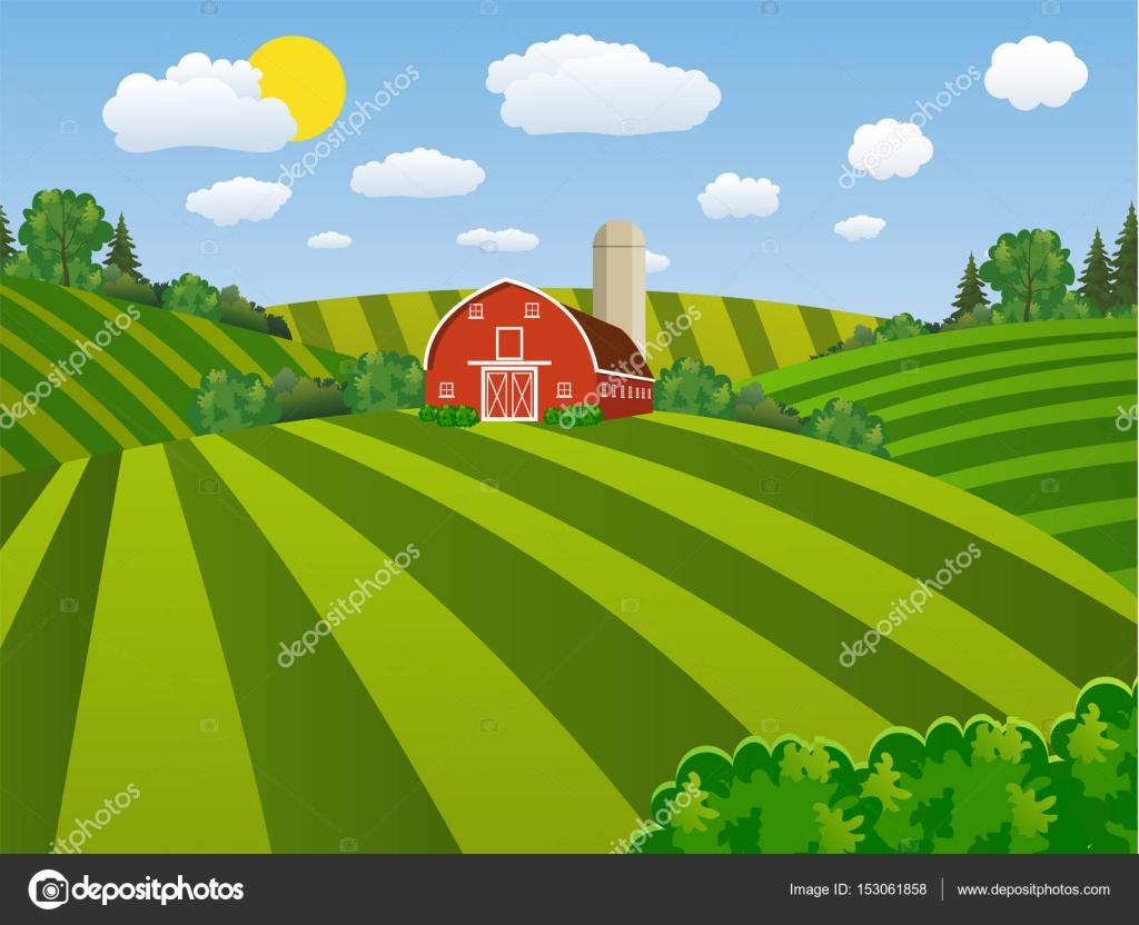 Cartoon farm green seeding field, — Stock Vector © drogatnev #153061858 for Farm Field Cartoon  104xkb