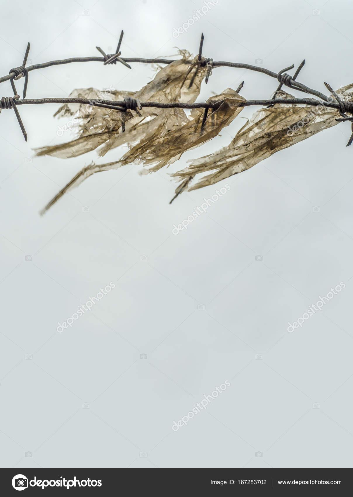 Prison Yard Barb Wire — Stock Photo © mrdoomits #167283702