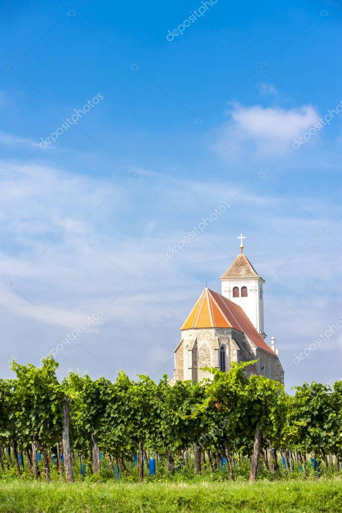 church with vineyard, Kirchenberg, Lower Austria
