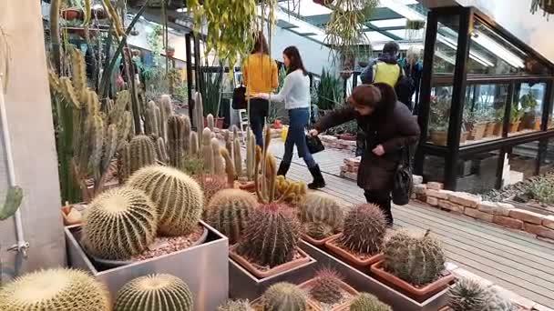 Lidé navštěvují výstavy z pouštních rostlin v botanické zahradě