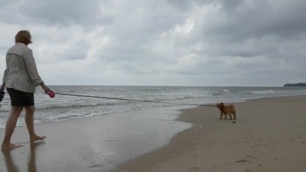 Kumsalda Yürüyen Genç Kadın