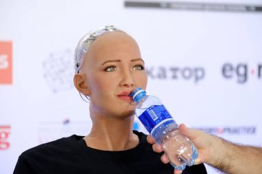Sophia humanoid robot at Open Innovations Conference at Skolokovo technopark