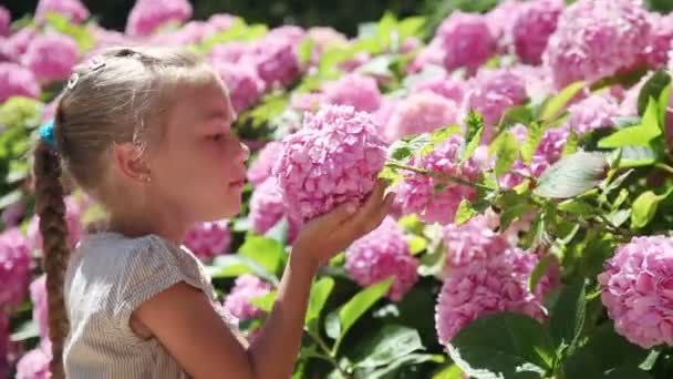 Happy little girl smelling a flower and smiling at the camera