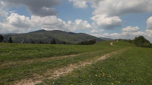 Krásná země pohled přes zelené pastviny vysokou v horách