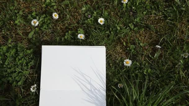 Ženská ruka psaní ne na papíře, kterým zelené jarní trávy na slunečný den