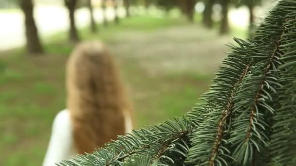 Dívka, poskakování a běží od kamery mezi přímkami borovic v parku