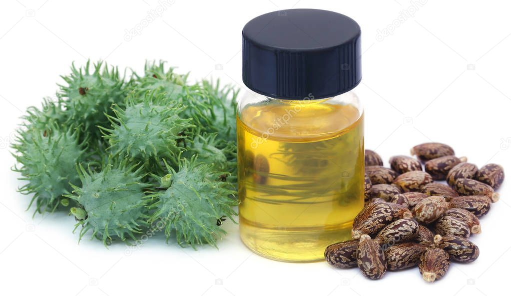 Castor oil with dry and green beans