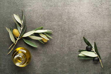 Olive oil bottle on background