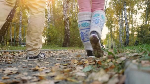 Young couple walking in the autumn park in slowmotion. 1920x1080