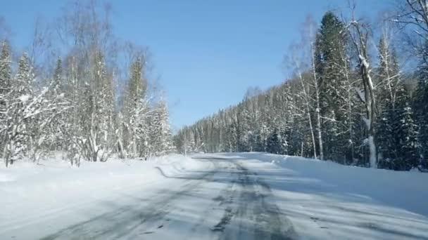 Zimní krajina s cestou v lese a modrá obloha v slowmotion. 1920 × 1080