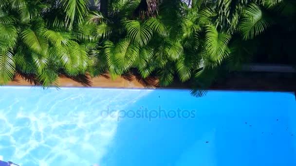 pohled shora krystalové plochy čisté vody v bazénu a palem, sun shine světlé bazén vodou smyčky pozadí. 3840 x 2160