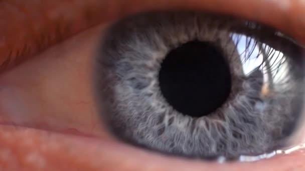 Macro shot of male human blue eye blinking in slow motion. 1920x1080