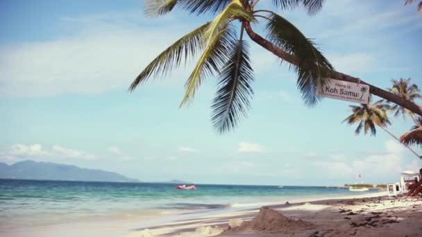 Egzotikus homokos strand és a palm tree-tenger partján, napsütéses napon a kék ég. 1920 x 1080