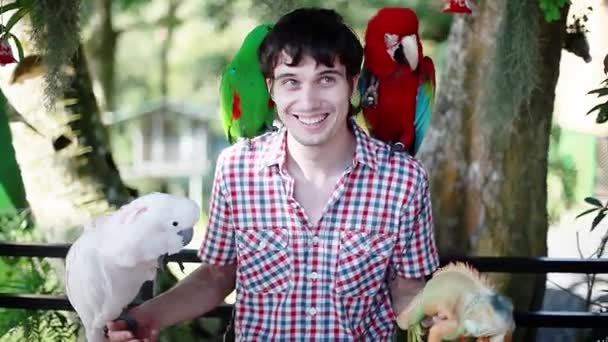 Happy man holds blue-gold Macaw parrot white parrot macaw and iguana in Koh Samui park. 1920x1080