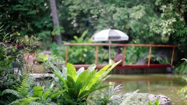 Paradise džungle lesa s krásným vodopádem. Smaragdové jezírko a exotické rostliny. 1920 × 1080. Thajsko