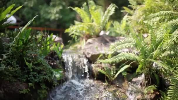 Regenwald Paradies mit wunderschönen Wasserfall in Thailand. Smaragd Teich und exotischen Pflanzen. 1920 x 1080