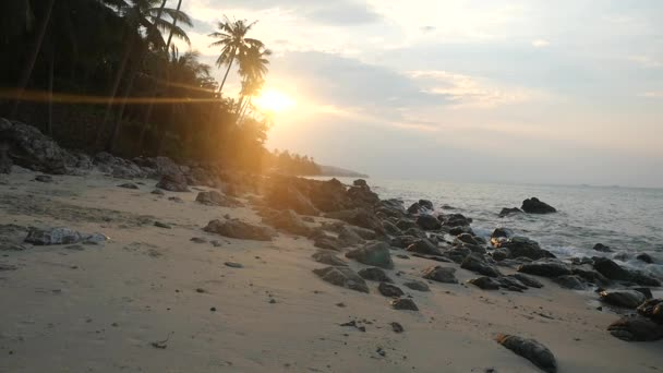 Bello tramonto sopra lisola tropicale sugli alberi di Palma e spiaggia rocciosi. Onde colpire le pietre al rallentatore. Koh Samui, Thailandia. 1920 x 1080