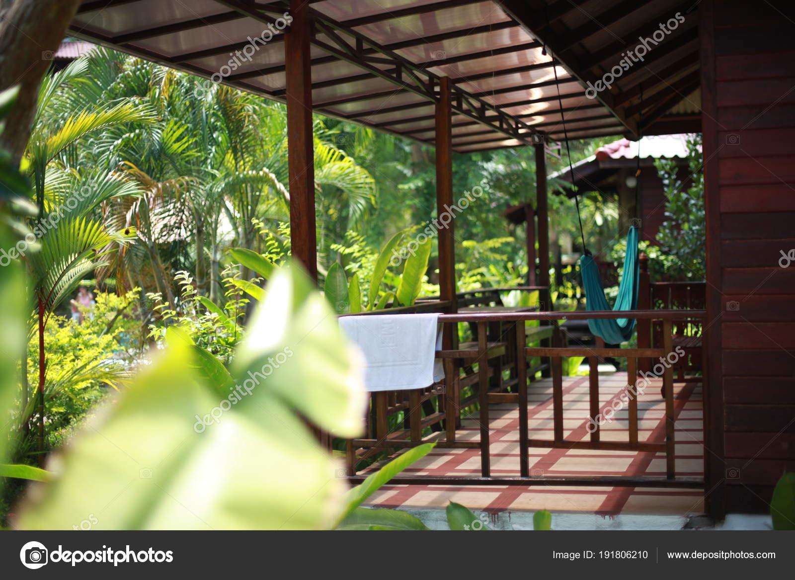 Lujosas Plantas Tropicales En Un Balneario Con Hamaca En La