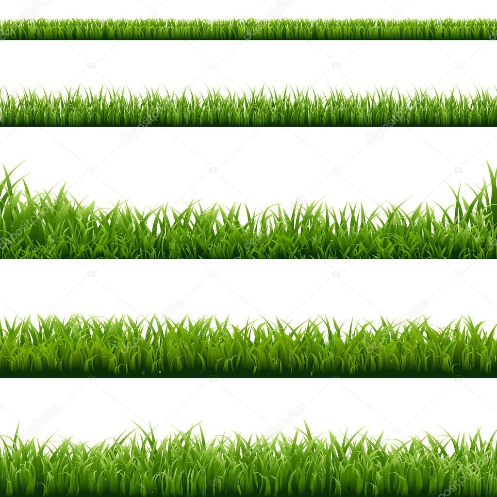 Set of Green Grass Borders