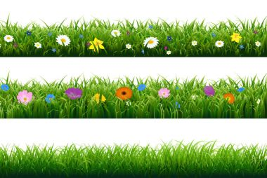 Grass Borders With Flowers