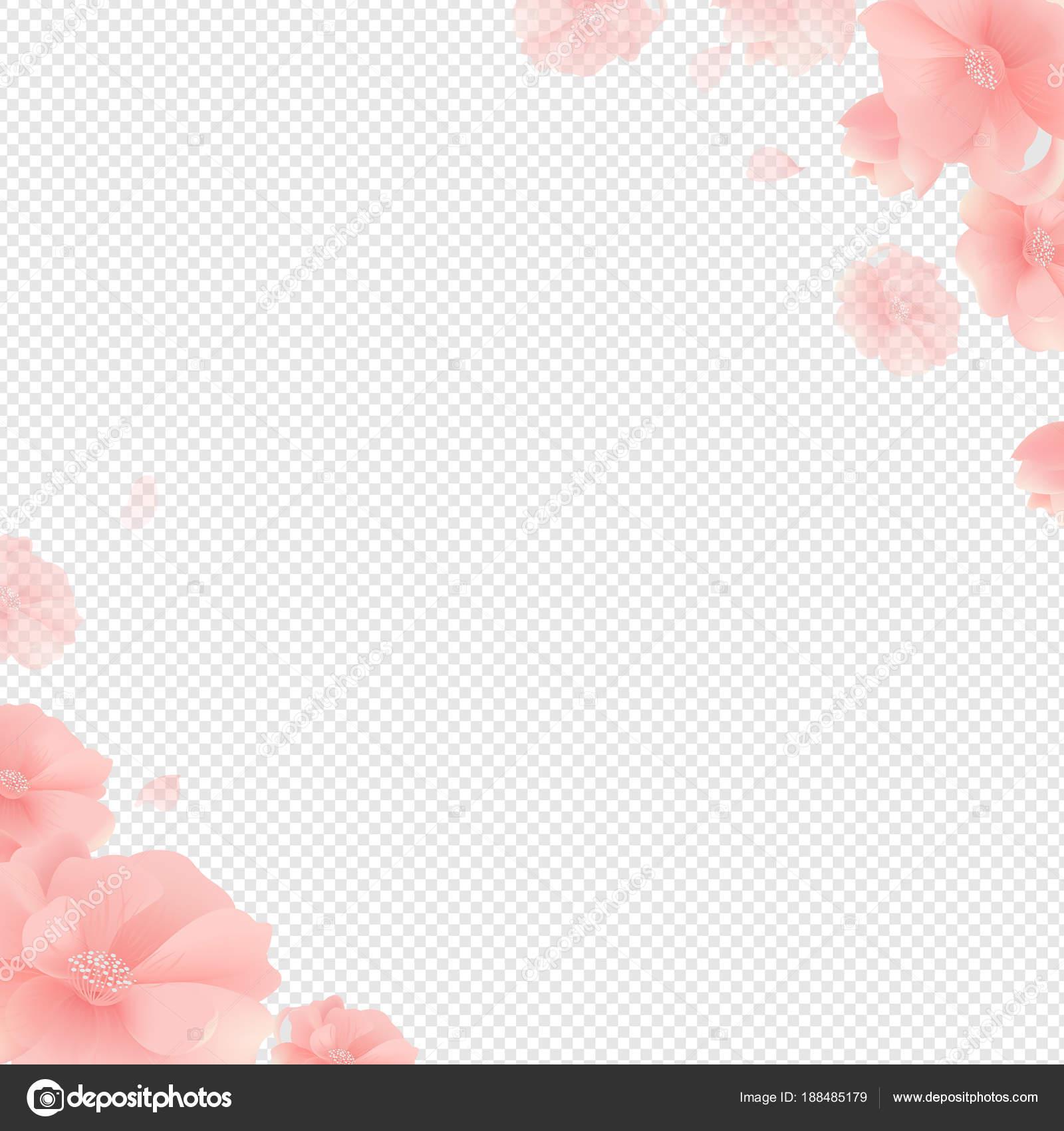 Border Flowers Transparent Background Gradient Mesh Vector Illustration Stock