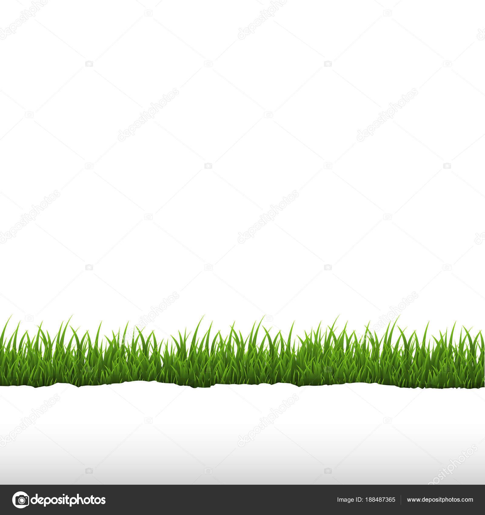 Grass Transparent Background Throughout Green Grass Ripped Paper Border Transparent Background Gradient Mesh Vector Stock