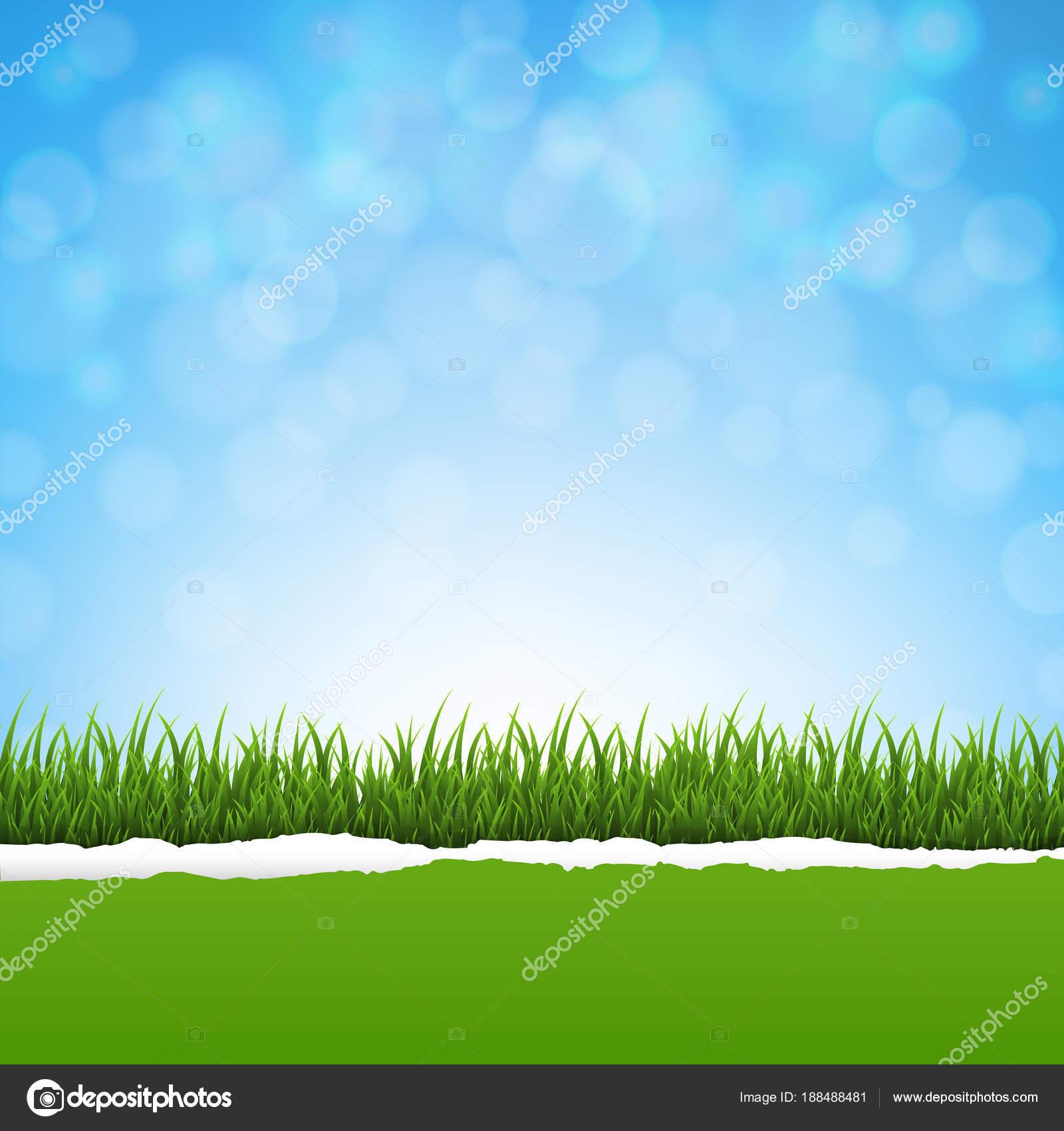 Yeşil çim Yırtık Kağıt Doğa Arka Plan Degrade Kafes Vektör Stok