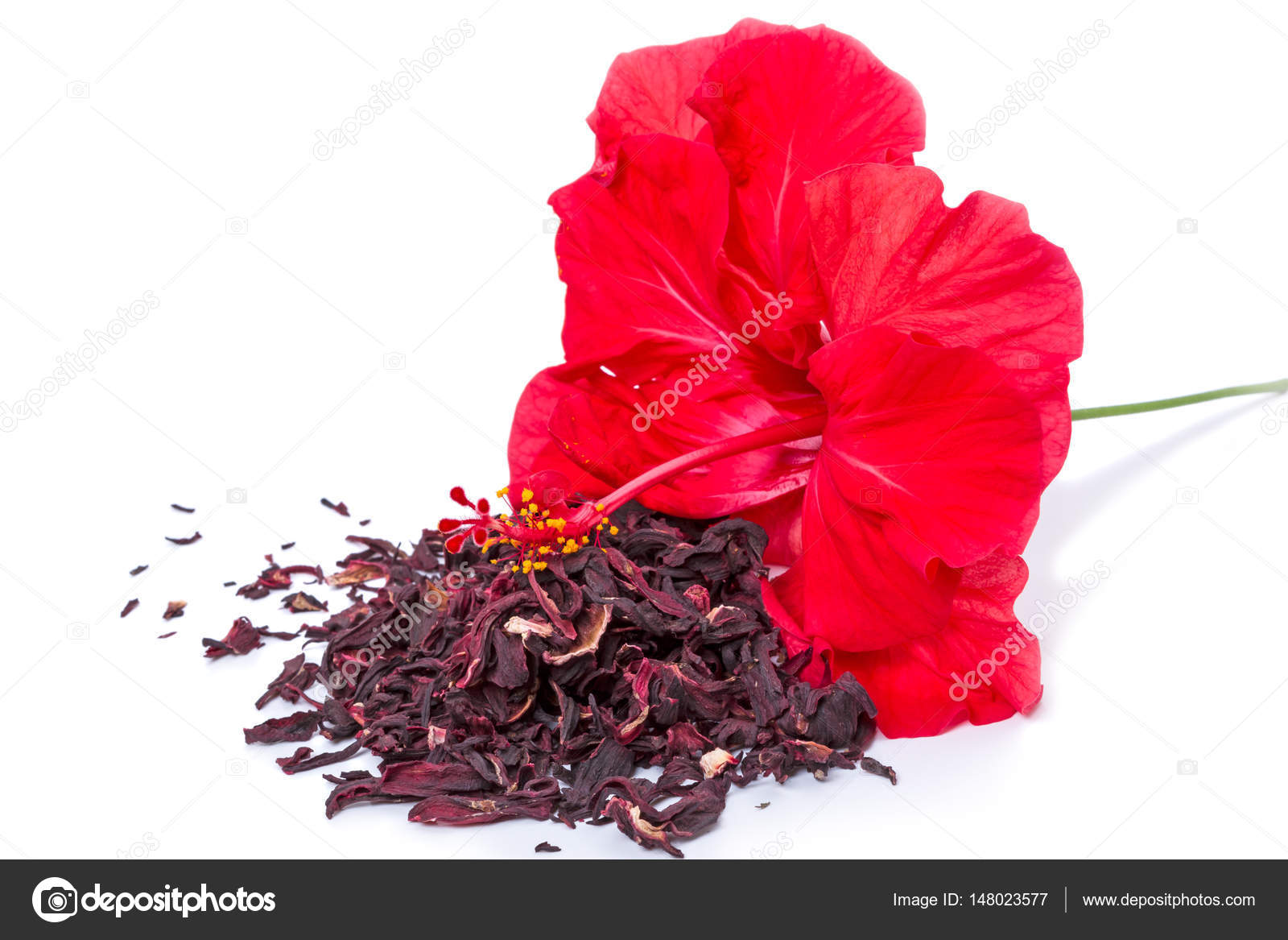 Floral hibiscus tea on white stock photo ra3rn 148023577 hibiscus flower and dry tea isolated on white background photo by ra3rn izmirmasajfo