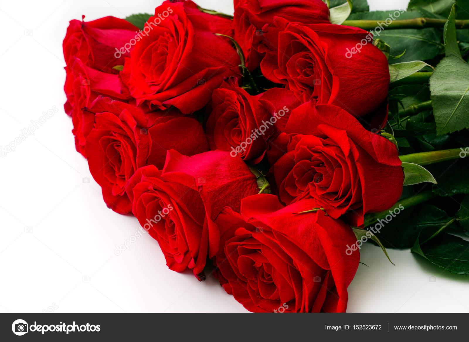 bouquet de 11 roses rouges sur fond blanc photographie. Black Bedroom Furniture Sets. Home Design Ideas