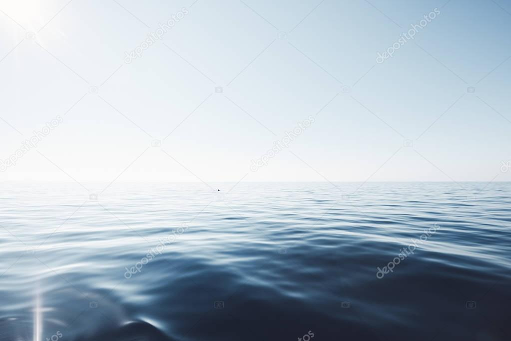 Dolphin in peaceful sea