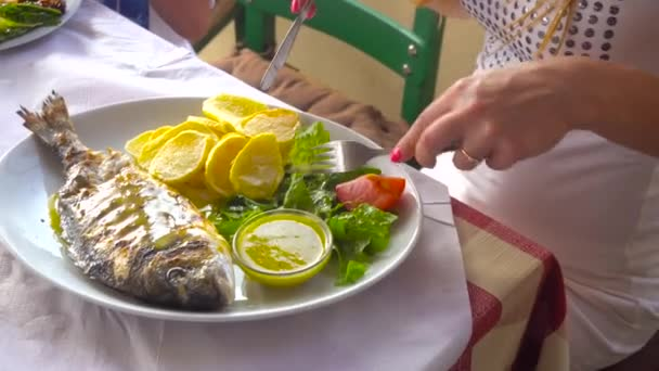 fried fish dorada on plate with potatoes and vegetables