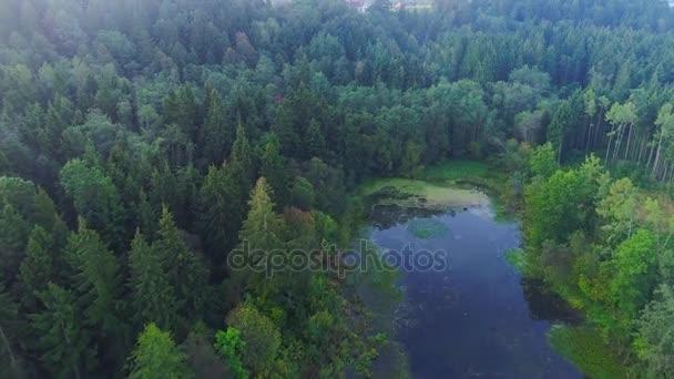 létání nad zamlžené jezero brzy ráno