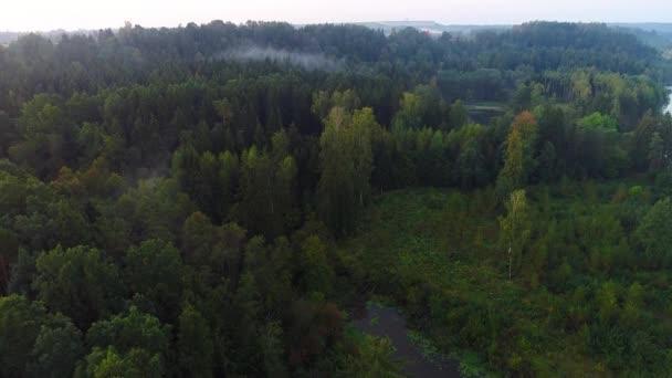 létání nad zelený les na letní čas