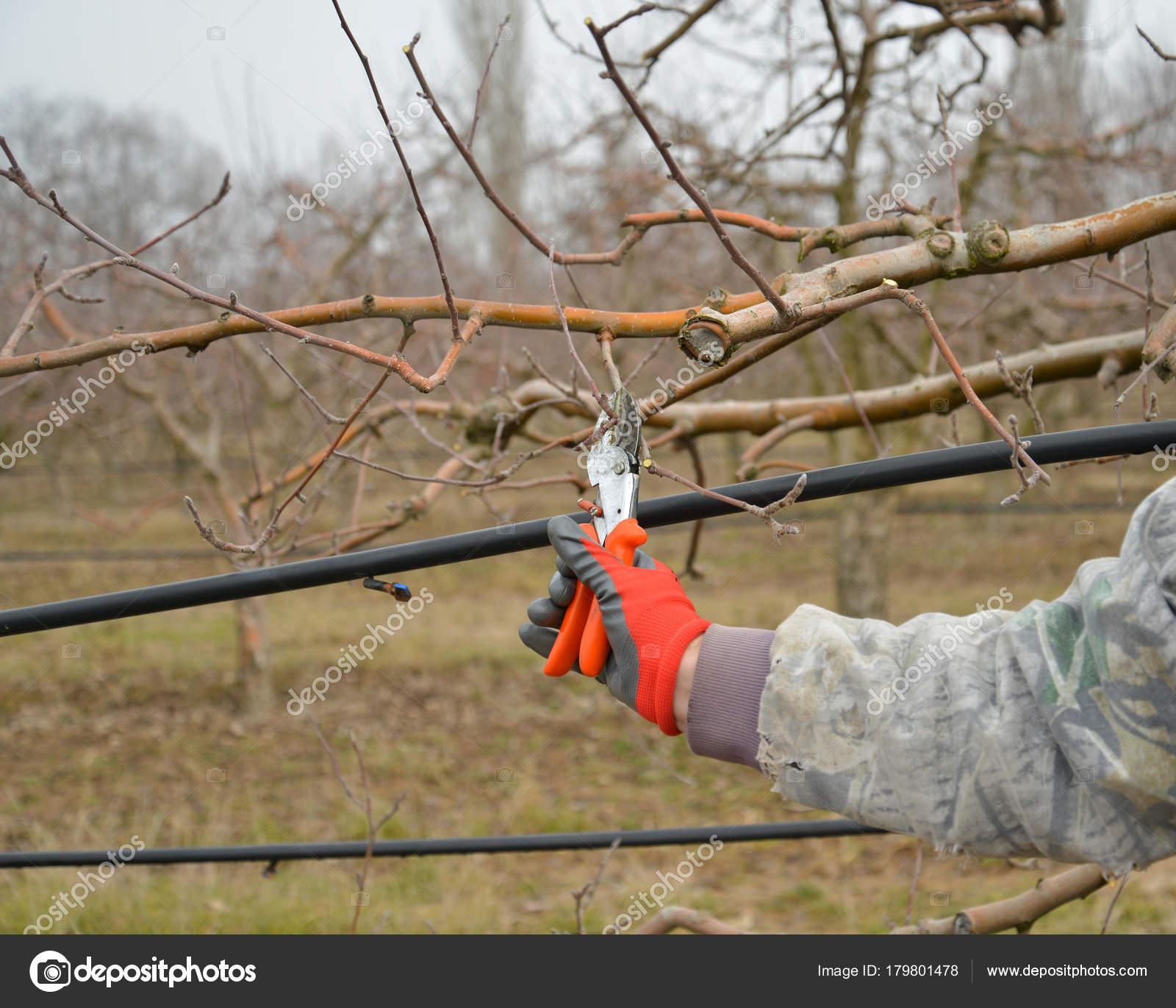 Centerpoint Archery