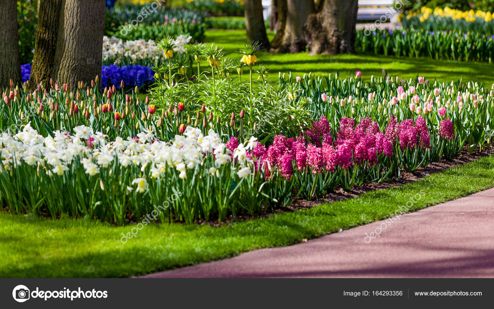Tuinlandschap. moderne tuin ontwerp. aangelegde tuin en gar